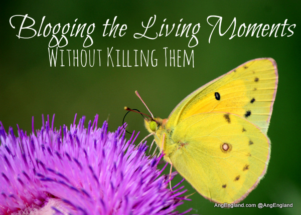 Blogging the Living Moments Without Killing Them
