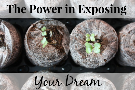 The Power in Exposing Your Dreams